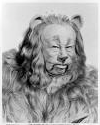 cowardly-lion6
