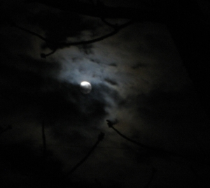 This month's full moon is in the sign of Capricorn